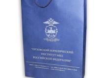 Пакет из эфалина, нанесение символики в 1 цвет (серебро)
